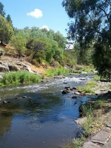 Merri-Creek